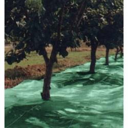 MANTA RECOGER OLIVA/ALME - SEGURVI - 6X12 M